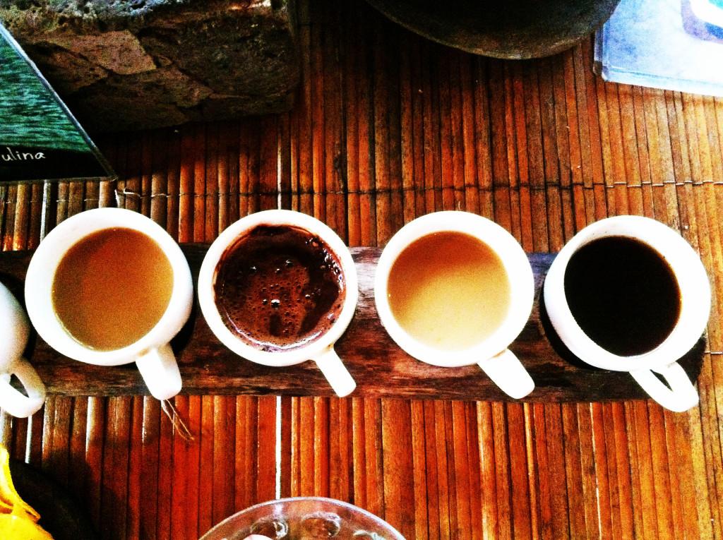 Bali coffee plantation | MyTravelEmotion